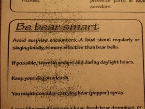 Bearsmart61108
