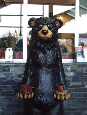 Bearsock91108