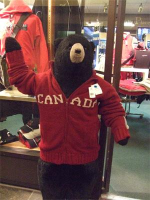 Bearswweater61108