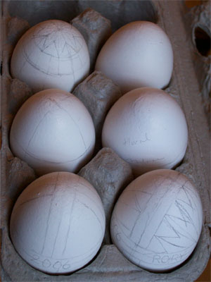 Eggswithpencils0104