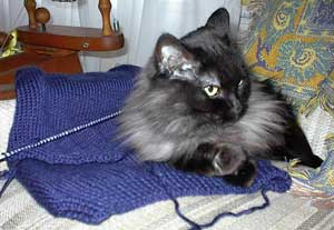 boringsweater