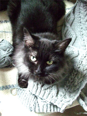 Milliessweater1701