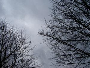 Skyforsandybl