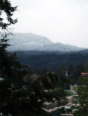 Snowonmountainorcas2004
