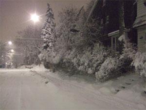 Snowystibliz0602