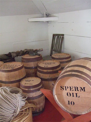 Spermoilcsps0708
