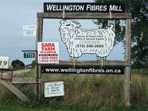 Wellingtonsign290809