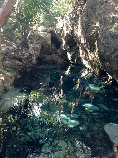 cenotesmall 2014-02-11