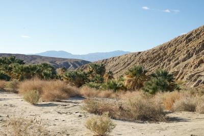 desert 2015-01-14