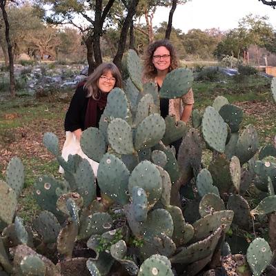 cactus 2016-03-04